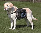 Bild: Trixie 30102 Rucksack für Hunde M 23  15 cm schwarz