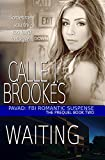 Front cover for the book Waiting: A PAVAD: FBI Prequel (PAVAD: FBI Romantic Suspense Book 2) by Calle J. Brookes