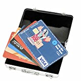 Storite Briefcase Style Credit/Debit/Visiting Business Card Holder, 4x2.5x0.625 Inches (Silver)