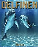 Delfine: Kinderbuch über Delfine mit sagenhaften Bilder & viel Wissenswertes