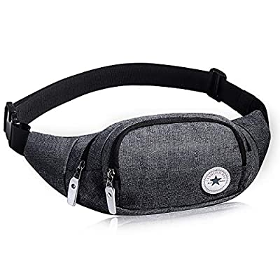 Doggy Bag et Sac Banane Multifonctions d'Evaduol, Doggy Bag à la mode de Grande Capacité, Sacoche de Ceinture Ajustable, Gris.