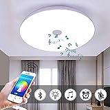 36W LED-Deckenleuchten mit Bluetooth-Lautsprecher-Smartphone-App, Musik Lampe RGB Farbtemperatur Verstellbar, Diammble Coole Weiße Runde Spül Halterung Leuchte,40 * 5.8Cm