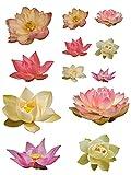 Unbekannt 12 tlg. XL Set: Wandtattoo / Sticker - Seerosen Blumen Blüten Seerose - Postersticker - Wandsticker Aufkleber