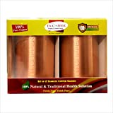 #10: Dr.Copper set of 2 Seamless Copper Glasses