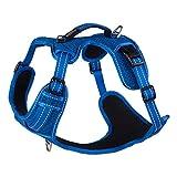 Rogz SJX06.B Explore Geschirr, L, blau