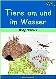 Alemán Libros infantiles de patos