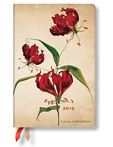 Paperblanks - Botanikmalerei Ruhmeskrone - Kalender 12 Monate 2019 Mini Tagesüberblick - deutschsprachige Ausgabe