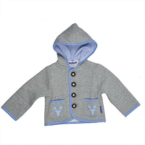 Eisenherz Baby Jungen Kapuzenjacke Sweatjacke mit Geweih, in grau und hellblau - fescher Trachtenlook in Größe 62/68