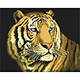 Malen Nach Zahlen Wandkunst Gelb Tiger Foto Leinwand Drucken Home Decor DIY Ölgemälde Für Erwachsene-No Frame