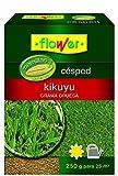 Flower 10793 10793-Semilla kikuyo, 250 g, No No aplica 10.3x3.7x14.5 cm