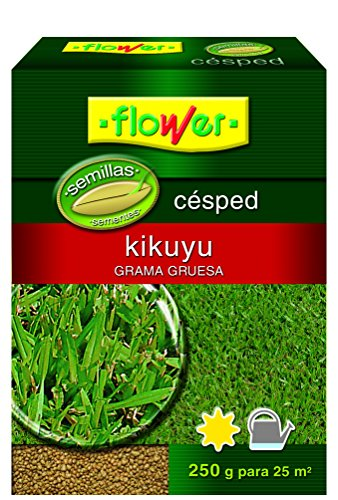 Flower 10793 10793-Semilla kikuyo, 250 g, No No aplica, 10.3x3.7x14.5 cm