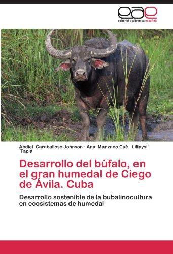 Desarrollo del Bufalo, En El Gran Humedal de Ciego de Avila. Cuba por Abdiel Caraballoso Johnson