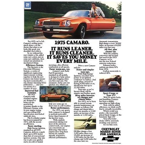 Classic Car e Muscle pubblicitari e il 1975 auto