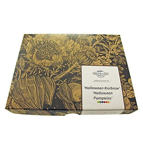 'Halloween Kürbisse' Samen-Geschenkset mit 3 schaurig-schöne Sorten, lecker & perfekt zum Schnitzen einer Kürbislaterne