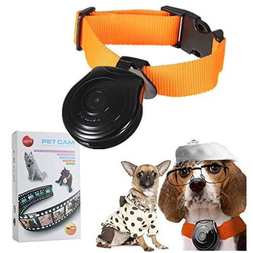 FOCUSPET Mini Digital Kamera Videorekorder Kamera DVR Video Recorder Hundehalsband für Hund Katze