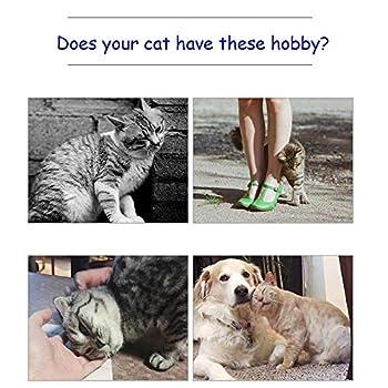 Kalolary 2 PCS Cat Self Groomer, Chats Brosse Peigne Fournitures pour Animal Domestique Coin Massage Machine de Massage d'angle pour Animal Domestique Chat Self Tondeuse Peigne Jouet (Bleu)