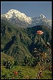 605045 Annapurna South From Gangdrung Himalayas A4 Photo
