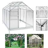 HG® Gewächshaus Aufzucht Frühbeet Treibhaus Garten Alu wahlweise in verschiedenen Größen mit Dachfenster inkl. Fundament