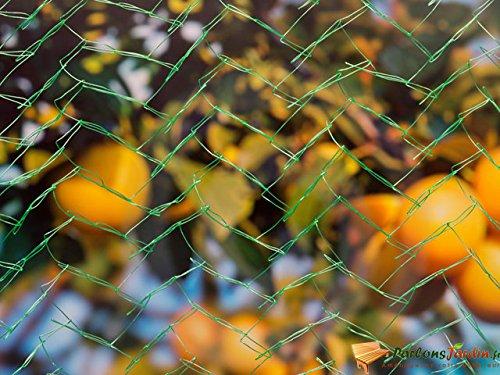 Filet anti-oiseaux vert 7,5 gr/m² 8x8 m