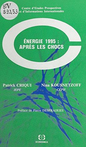 Énergie 1995, après les chocs