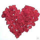Accmart (TM) 100 Stück Rosenblätter Blumen Blätter für Hochzeit Dekoration Deko (Weinrot)
