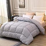 Decken Blanket Atmungsaktive Bettdecken kuscheldekce Tagesdecken steppdecke Single Double Feather Velvet Winter wird von den Schülern verdickt, um warm zu halten Quilten ist grau 200 * 230cm 2,5kg
