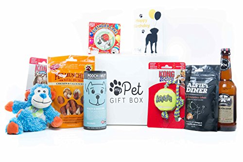 The Birthday Boy Treats & Toys Gift Box For Dogs, Dog Birthday Present, Dog Birthday Cake, Dog Birthday Gifts