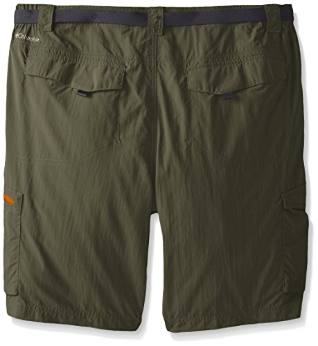 Columbia Herren Silber Ridge Shorts Zypresse/Valencia