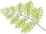 Felce stencil-riutilizzabili a forma di foglia di pianta e ramoscelli stencil da-da usare su carta progetti scrapbook Journal muri pavimenti tessuto mobili in vetro legno etc. xs