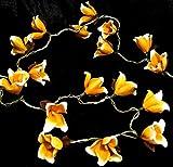 Guru-Shop Exotische Blüten LED Lichterkette Chiang Mai 20 Stk - Orange/weiß, Papier, Lichterketten