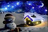 Tinas Collection Weihnachtsbild Schneemann LED mit 14 LEDs, 40 x 60 cm