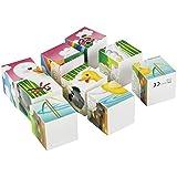 PlayGo - Rompecabezas cuadrados, 9 cubos, 4 puzzles (Colorbaby 2000)