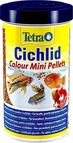 Tetra Cichlid Colour Mini (Spezialfutter für alles- und fleischfressende kleinere Cichliden, Hauptfutter für leuchtende Farben bei allen roten, orangen und gelben Buntbarschen), 500 ml Dose -