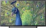 Sony 101.6 cm (40 inches) Full HD LED TV KLV-40R352E (2017 Model)