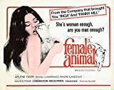 Reproduction of a poster presenting - Female Animal 02 - A3 Poster Print Buy Online