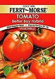 Boy Tomato Seeds