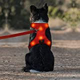 Domi LED Dog Harness, Easy Control Led Dog Vest Harness with Adjustible Belt