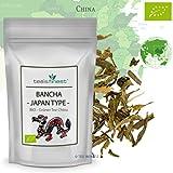 Bio Bancha Grüner Tee