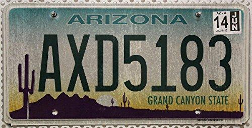 USA Nummernschild ARIZONA ~ US Kennzeichen KAKTUS WÜSTE Motiv ~ Blechschild