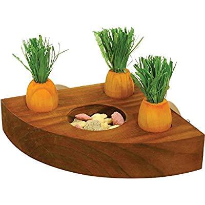 Rosewood Boredom Breakers Carrot Toy And Treat Holder : everything 5 pounds (or less!)