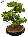 Fancy Martartificial Bonsai Green Tree P...