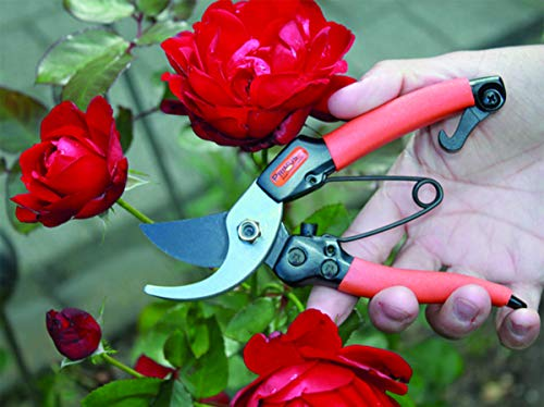 Garten Primus Garten-/Damenschere - 6