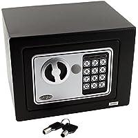 BIRD - Caja fuerte digital para oficina o uso doméstico, para montaje en pared o suelo (23 cm x 17 cm x 17 cm)