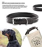 Jack & Russell Premium Leder Hunde Halsband Bruno - Original Leder Hundehalsband Bruno (L, Schwarz)