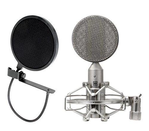 Pronomic RM-1 Bändchenmikrofon SET inkl. Popschutz