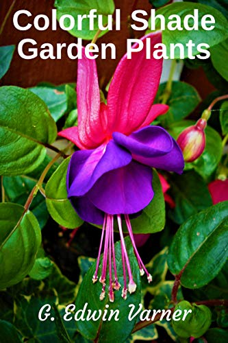 Colorful Shade Garden Plants (English Edition) -