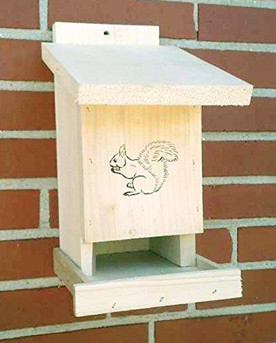 Vogelhaeuser-Raschen Futterstation Eichhörnchen