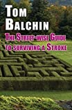 The Street-Wise Guide to Surviving a Stroke (The Street-wise Guides)