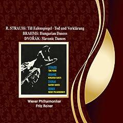 R. Strauss: Tod und Verkl�rung, Op.24