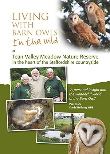 living-with-barn-owls-in-the-wild